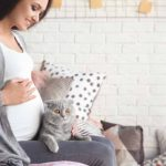 Expectant mother pregnancy and a cat in the house
